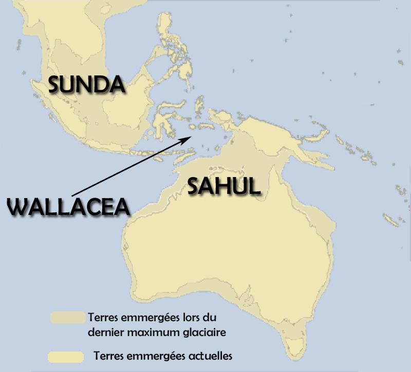 スンダとサフル大陸の地図